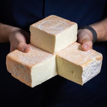 Taleggio soft cheese PDO...