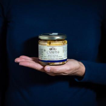 Greater amberjack in olive...